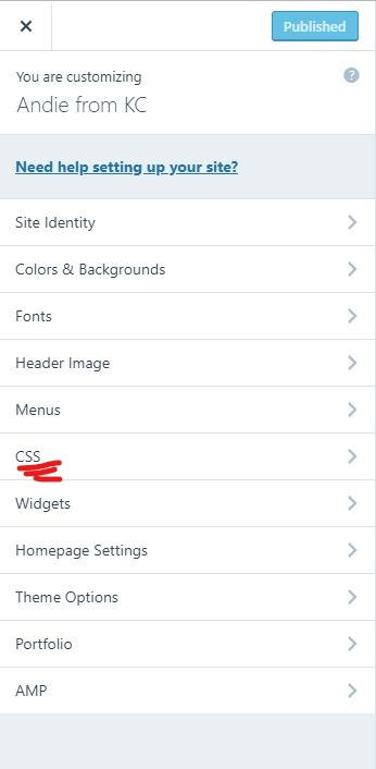 CSS Customizer in WordPress